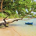 Tropical Island Scenery by Artur Bogacki