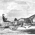 Trotting Horse, 1853 by Granger