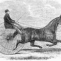 Trotting Horse, 1861 by Granger