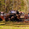 Truck Graveyard by Carla Parris