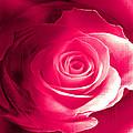 True Love Amore Vero by Monica Ghit