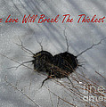 True Love Will Break The Thickest Ice by Ausra Huntington nee Paulauskaite
