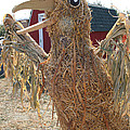 Truly A Scarecrow by Susan Herber