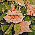 Trumpet Flowers by Carla Parris
