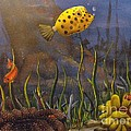 Trunkfish And Anemone Fish by Sandy  Hurst