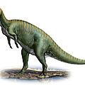 Tsintaosaurus Spinorhinus by Sergey Krasovskiy