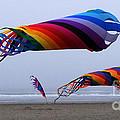Go Fly A Kite 9 by Bob Christopher