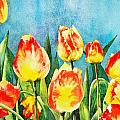 Tulips by Diane Fujimoto