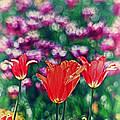 Tulips On Beautiful Bokeh by Lynne Jenkins