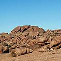 Tumbling Rocks Of Gold Butte by Lorraine Devon Wilke