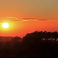 Tundra Sunset by Athena Mckinzie