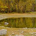 Tunnel Pond by Idaho Scenic Images Linda Lantzy