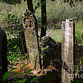 Turkish Cemetery In Rural Mugla Province by Louise Heusinkveld