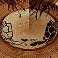 Turtles Love Digital Artwork by Georgeta  Blanaru