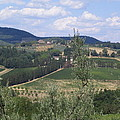 Tuscan Countryside by Angela  Rose