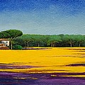Tuscan Landcape by Trevor Neal