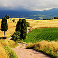 Tuscany by Brian Jannsen