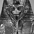 Tutankhamun by Kristin Elmquist