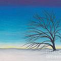 Twilight  by Scott Alberts