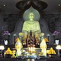 Twisted Buddha by David Morefield