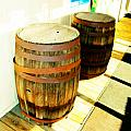 Two Barrels 2 by Lenore Senior