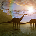 Two Diplodocus Dinosaurs Wade by Corey Ford