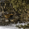 Two Ducks And A Tub Square by LeeAnn McLaneGoetz McLaneGoetzStudioLLCcom