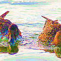 Two Ducks by John  Kolenberg
