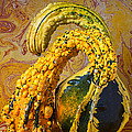 Two Gourds by Garry Gay