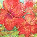 Two Hibiscus Blossoms by Carla Parris