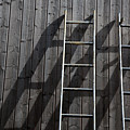 Two Ladders Leaning Against A Wooden Wall by Meera Lee Sethi