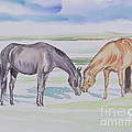 Two Mares by Gail Dolphin