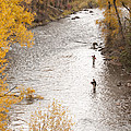 Two Men Flyfishing On The Aspen-lined by Pete Mcbride