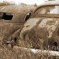 Two Old Rear Ends-sepia by Randy Harris