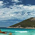 Two Peoples Bay Panorama by James Fulton