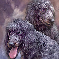 Two Poodles by Carol Cavalaris