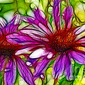 Two Purple Daisy's Fractal by Donna Greene
