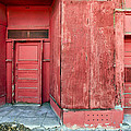 Two Red Doors by James Steele