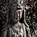 Two Sides Of Buddha by Danuta Bennett