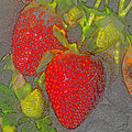 Two Strawberries by David Lee Thompson
