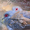 Two Turtle Doves Card by Carol Cavalaris