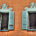 Two Windows by Mats Silvan