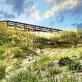 Tybee Island Dunes No.2 by Tammy Wetzel