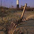 Tybee Island Lighthouse - Fs000812 by Daniel Dempster