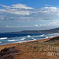 Typical Australian Beach by Kaye Menner