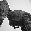 Tyrannosaurus Rex by Guy Ricketts