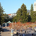 Uc Berkeley . Sproul Plaza . Sather Gate And Sather Tower Campanile . 7d10000 by Wingsdomain Art and Photography