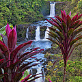 Umauma Falls Big Island Hawaii by Gary Beeler