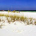 Umbrellas On The Beach by Judi Bagwell