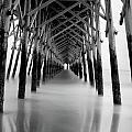 Under Folly Pier by Calvin Smith
